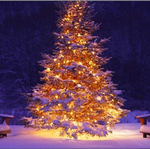 Skärmavbild 2013-12-22 kl. 14.45.36