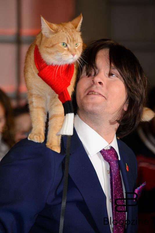 159009, Bob the Street Cat, James Bowen attends the World Premiere of A Street Cat Named Bob. London, United Kingdom - Thursday November 3, 2016. UK, FRANCE, AUS, NZ, CHINA, HONG KONG, TAIWAN, SPAIN & ITALY OUT Photograph: © i-Images, PacificCoastNews. Los Angeles Office (PCN): +1 310.822.0419 UK Office (Photoshot): +44 (0) 20 7421 6000 sales@pacificcoastnews.com FEE MUST BE AGREED PRIOR TO USAGE