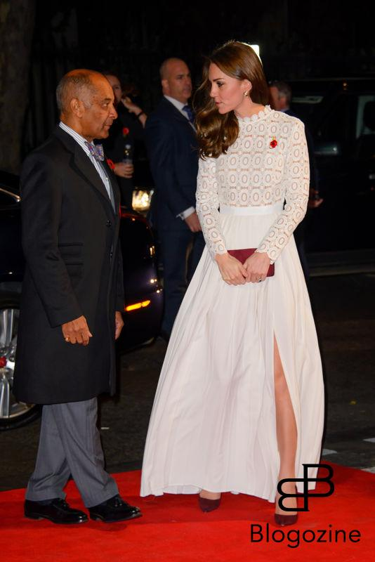 159009, Her Royal Highness The Dutchess of Cambridge attends the World Premiere of A Street Cat Named Bob. London, United Kingdom - Thursday November 3, 2016. UK, FRANCE, AUS, NZ, CHINA, HONG KONG, TAIWAN, SPAIN & ITALY OUT Photograph: © i-Images, PacificCoastNews. Los Angeles Office (PCN): +1 310.822.0419 UK Office (Photoshot): +44 (0) 20 7421 6000 sales@pacificcoastnews.com FEE MUST BE AGREED PRIOR TO USAGE