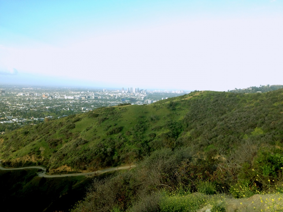 View towards Century City and Santa Monica.