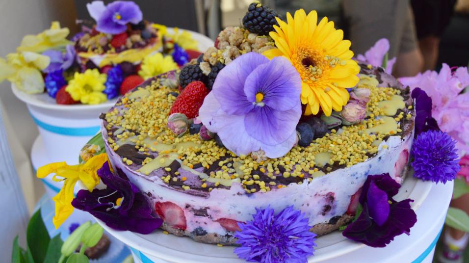 raw-food-cake-tanja-dyredand-mindfullyraw-tanja-956x536