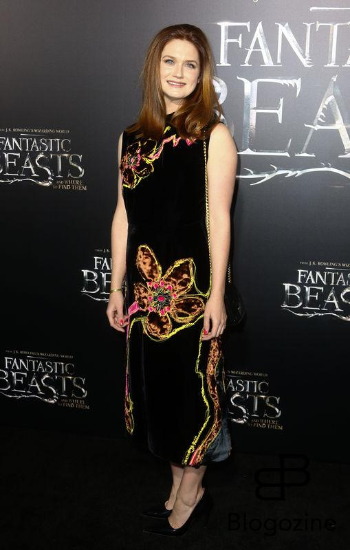 "52228405 Celebrities attend the premiere of ""Fantastic Beasts' in New York City, New York on November 10, 2016. FameFlynet, Inc - Beverly Hills, CA, USA - +1 (310) 505-9876"