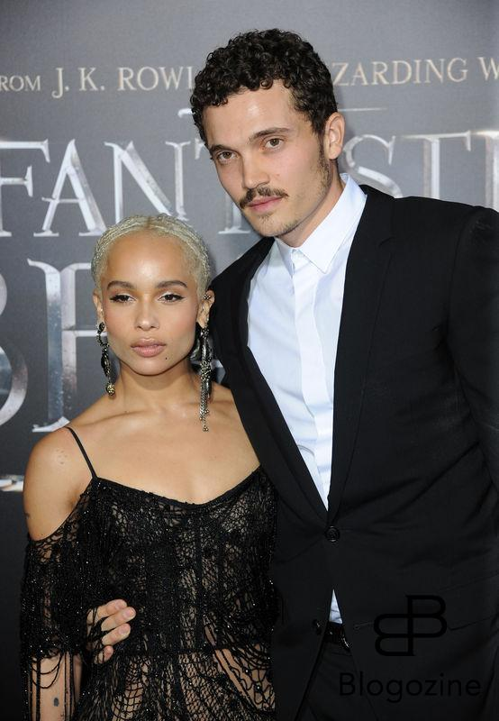 52228727 Celebrities attend the premiere of 'Fantastic Beasts' at The Chinese Theater in Hollywood, California on November 10, 2016. FameFlynet, Inc - Beverly Hills, CA, USA - +1 (310) 505-9876 RESTRICTIONS APPLY: NO FRANCE
