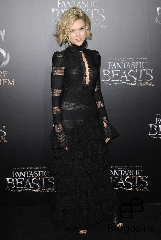 52228719 Celebrities attend the premiere of 'Fantastic Beasts' at The Chinese Theater in Hollywood, California on November 10, 2016. FameFlynet, Inc - Beverly Hills, CA, USA - +1 (310) 505-9876 RESTRICTIONS APPLY: NO FRANCE