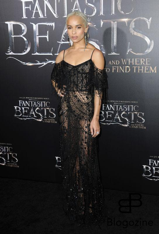 52228734 Celebrities attend the premiere of 'Fantastic Beasts' at The Chinese Theater in Hollywood, California on November 10, 2016. FameFlynet, Inc - Beverly Hills, CA, USA - +1 (310) 505-9876 RESTRICTIONS APPLY: NO FRANCE