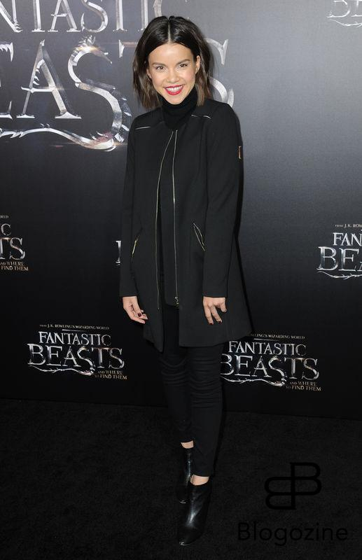 52228725 Celebrities attend the premiere of 'Fantastic Beasts' at The Chinese Theater in Hollywood, California on November 10, 2016. FameFlynet, Inc - Beverly Hills, CA, USA - +1 (310) 505-9876 RESTRICTIONS APPLY: NO FRANCE